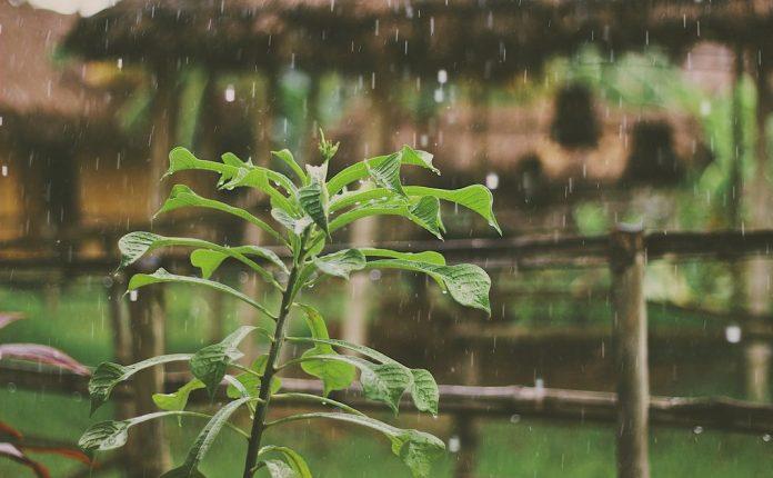Proses Terjadinya Hujan